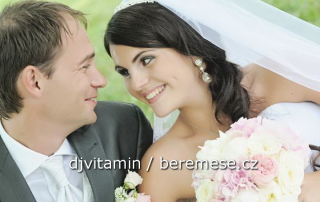 dj na svatbu, svatba Lnáře